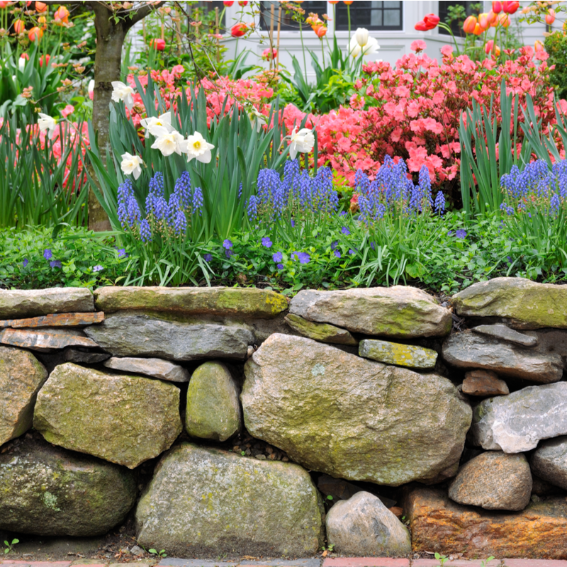 stone retaining wall with flowers