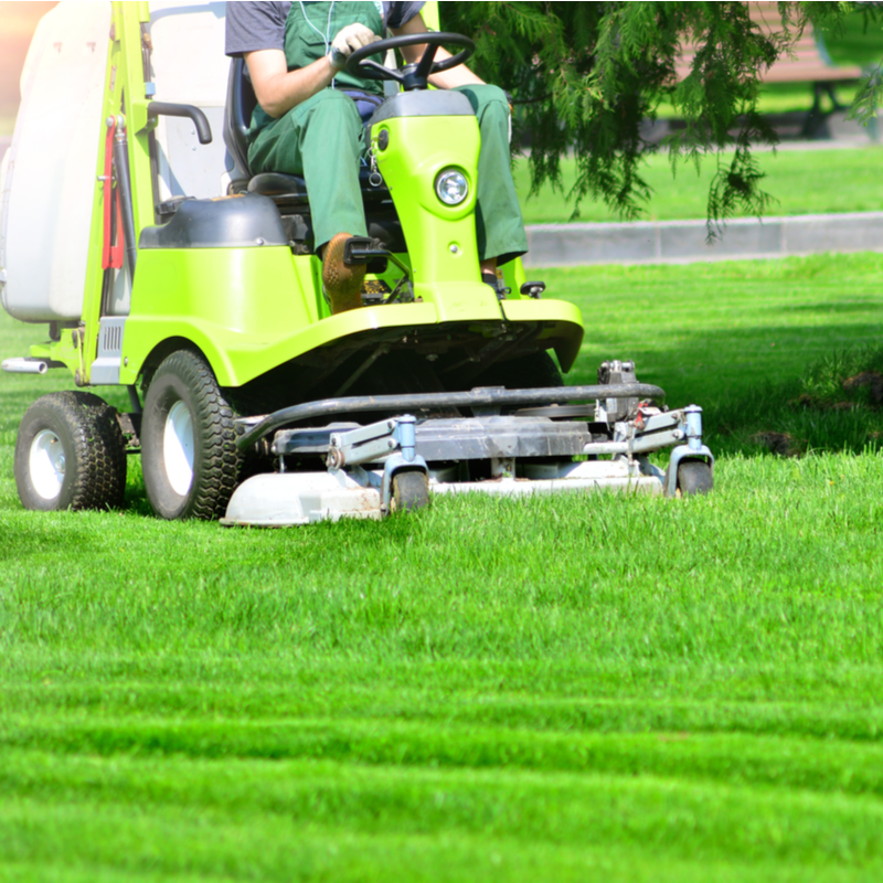 professional mowing
